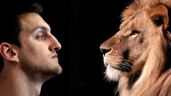 De leones y hombres